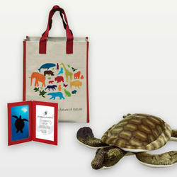 Sea_turtle_plush_07.24.12_help