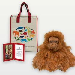 Orangutan_plush_07.24.12_help
