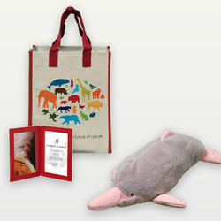 Pink_river_dolphin_plush_07.24.12_help