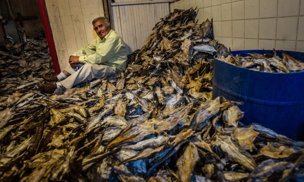 Jose Eduardo Onate Parra, 70, poses for a portrait with a large stock of dried hake that he sells out of his home in Cocholgue, a small fishing village near Concepcion, Chile.