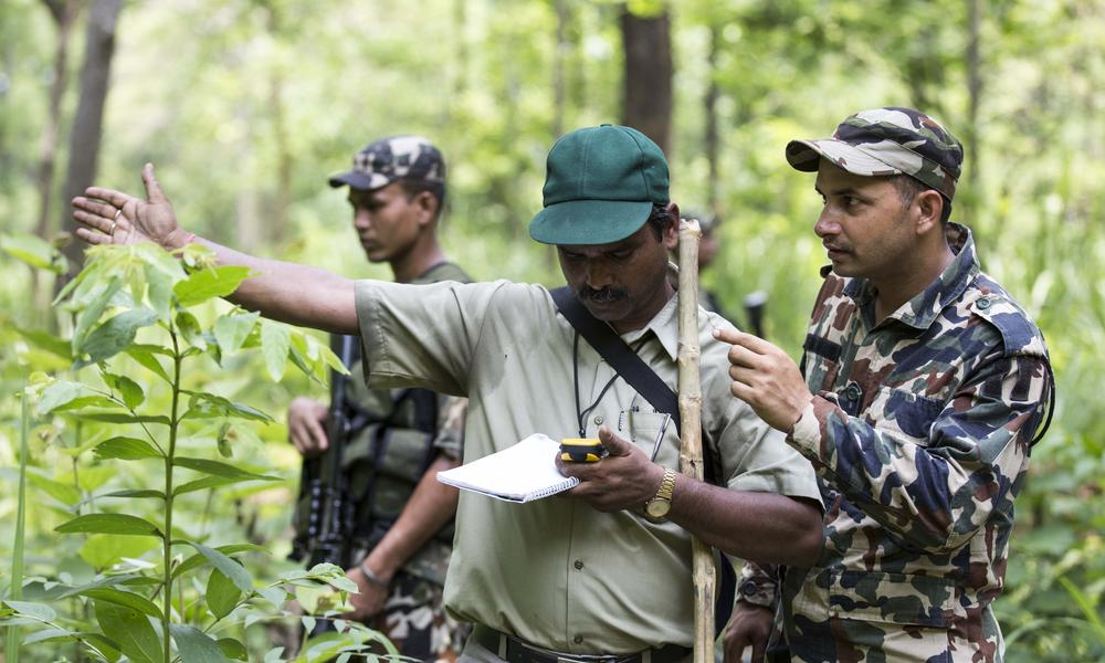 How Nepal Got to Zero Poaching
