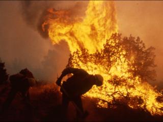 smoke jumper fighting fire
