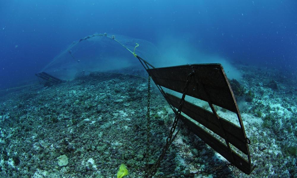 Bycatch - bottom trawler
