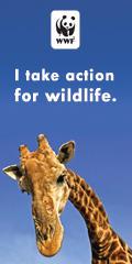I Take Action
