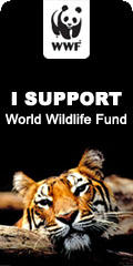 WWF Support, Tiger