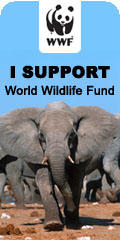 WWF Support, Elephant