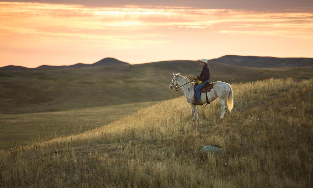 lyle perman on ranch