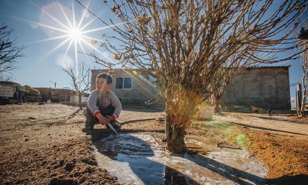 boy with rain-fed farm