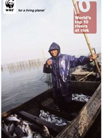 World&#x27;s Top 10 Rivers at Risk  Brochure