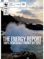 The Energy Report Brochure