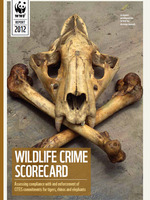 Wildlife Crime Scorecard Brochure