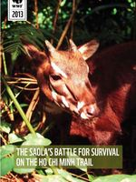 The Saola's Battle for Survival on the Ho Chi Minh Trail Brochure