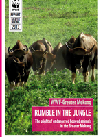The Plight of Endangered Hooved Animals in the Greater Mekong Brochure