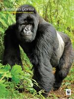 Mountain Gorilla: WWF Wildlife and Climate Change Series Brochure