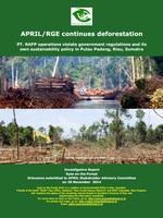 APRIL/RGE Continues Deforestation Brochure
