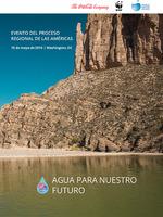 Evento Del Proceso  Regional De Las Americas Brochure