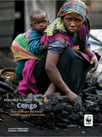 In Pursuit of Prosperity: Congo Chapter Summary Brochure